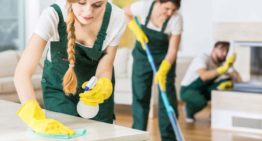 Home Cleaning Tips for New year