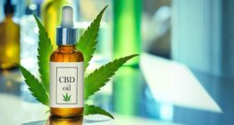 Why CBD oil is Best?